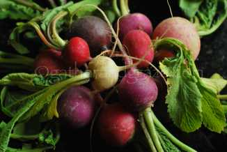Mixed Radishes | The Dinner Party Collective